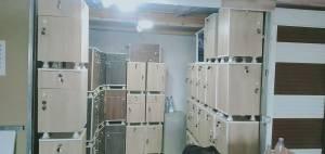 Bejaia-Emploi-Services-0552015459