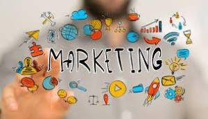Alger-Emploi-Services-Assistant-(e)-marketing