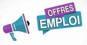 Alger-Emploi-Services-Vendeur-(se)