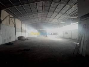 Oran-Immobilier-Hangar-1500m2-dont-1000m2-couverts-à-la-zone-indus