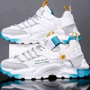 Alger-Mode-Beaute-basket-cealex-sneakers