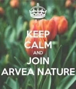 Alger-Emploi-Services-Arvea-nature/produits